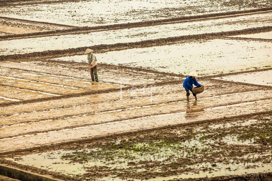 心道法師,零飢餓,坐禪的力量,氣候變遷,全球飢荒,世界糧農組織,改變糧食耕種方式與採取帶環境友善的管理方式,
